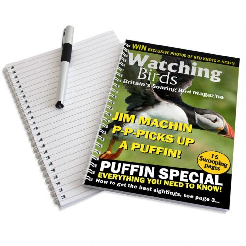 Personalised Watching Birds A5 Notebook